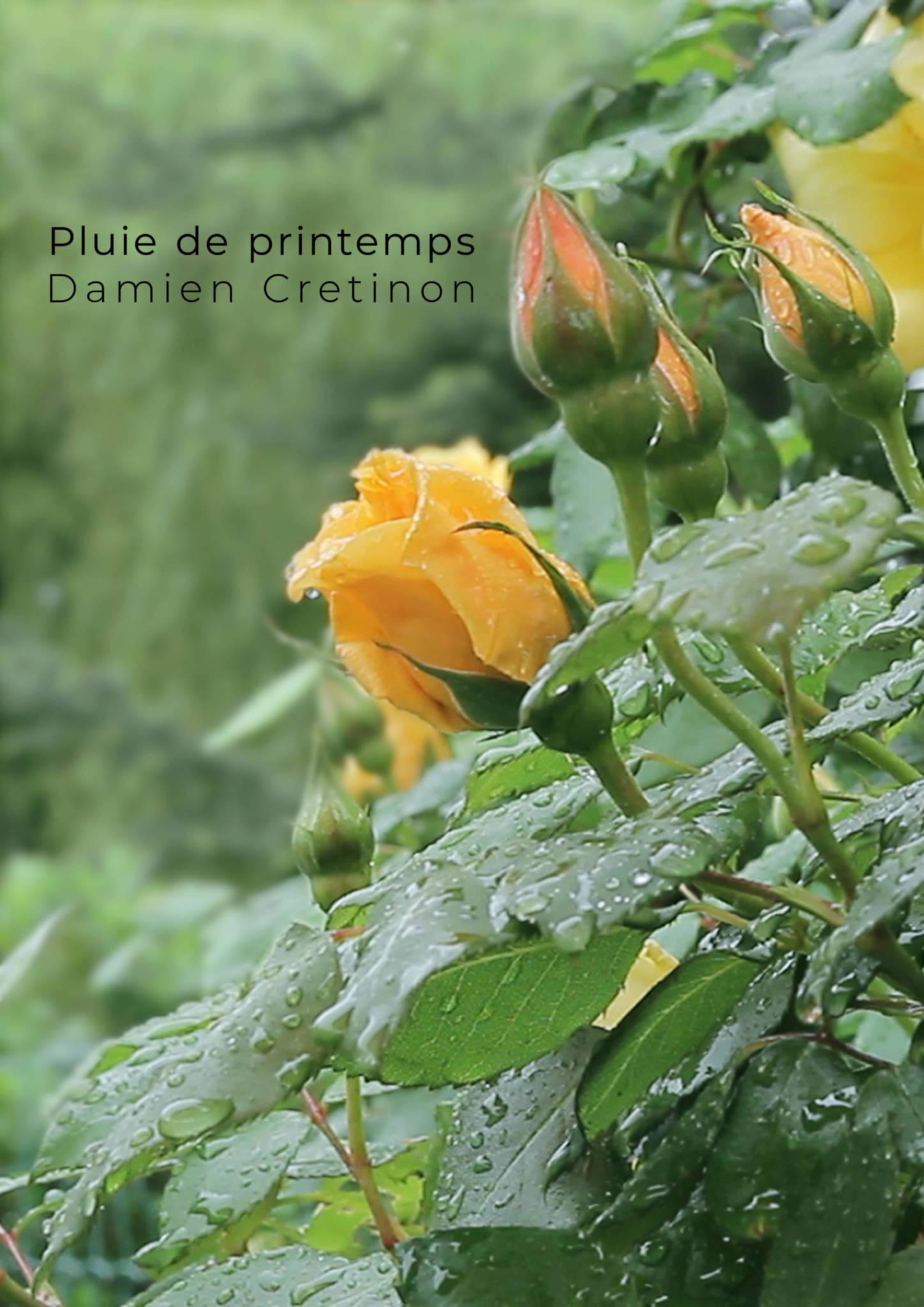 Pluie de printemps Affiche