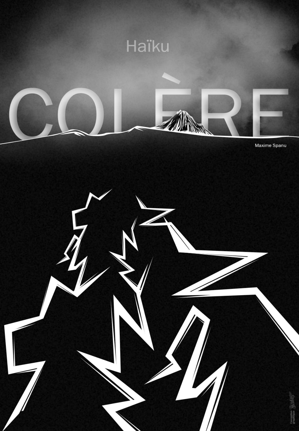 Affiche Colère Maxime Spanu
